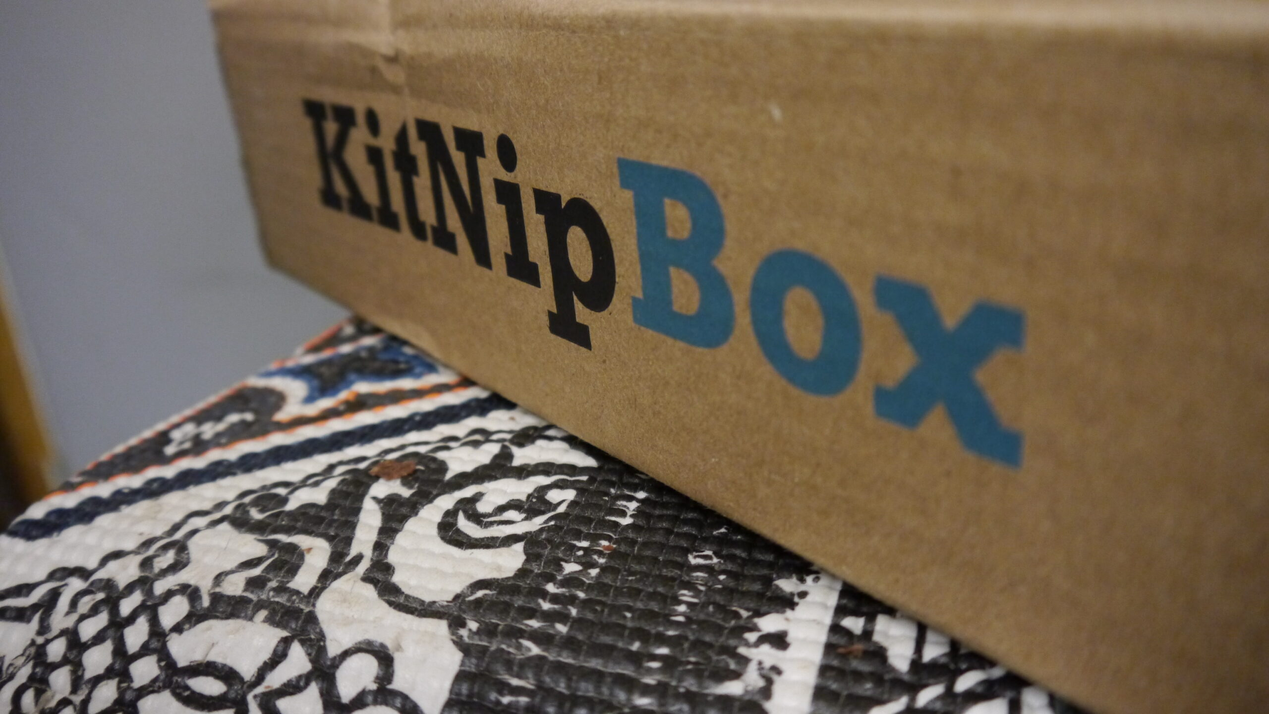 KitNipBox & C.A.T.S. – A Pawtnership in the Making